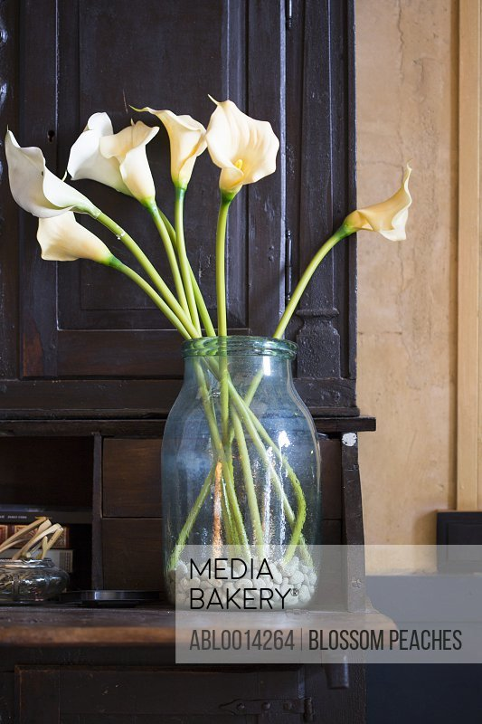 Fake Calla Lilies in a Vase
