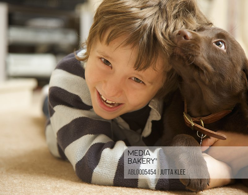 Smiling boy with a chocolate labrador puppy chewing his hair