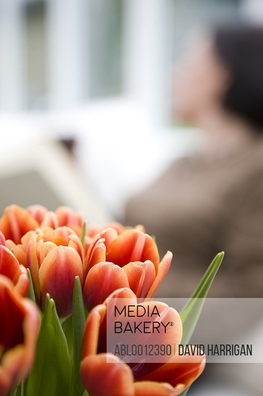 Close up of a bunch of tulips  with woman sitting behind them