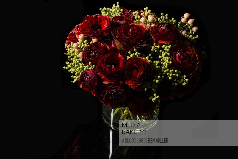 Bouquet of Red Persian Buttercup Flowers and Hypericum Berries