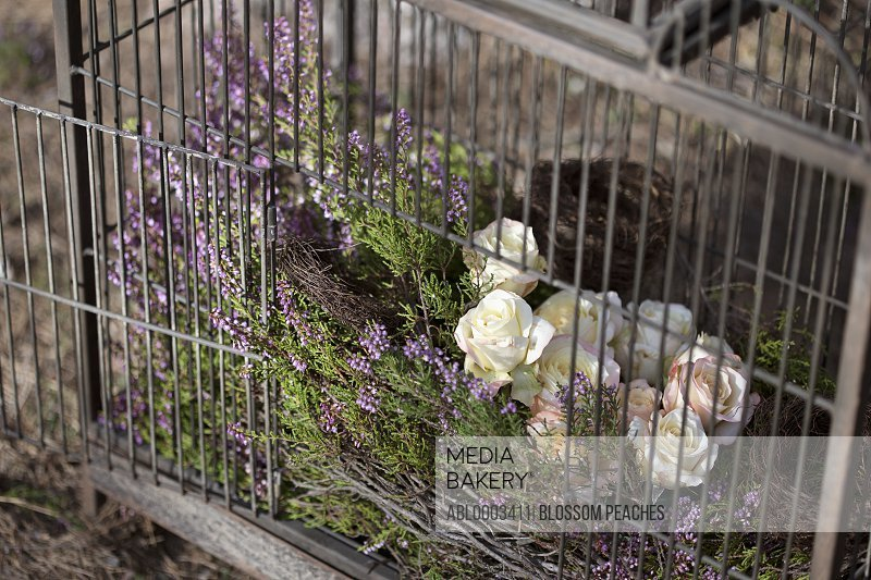 Cage with Lavender and Roses