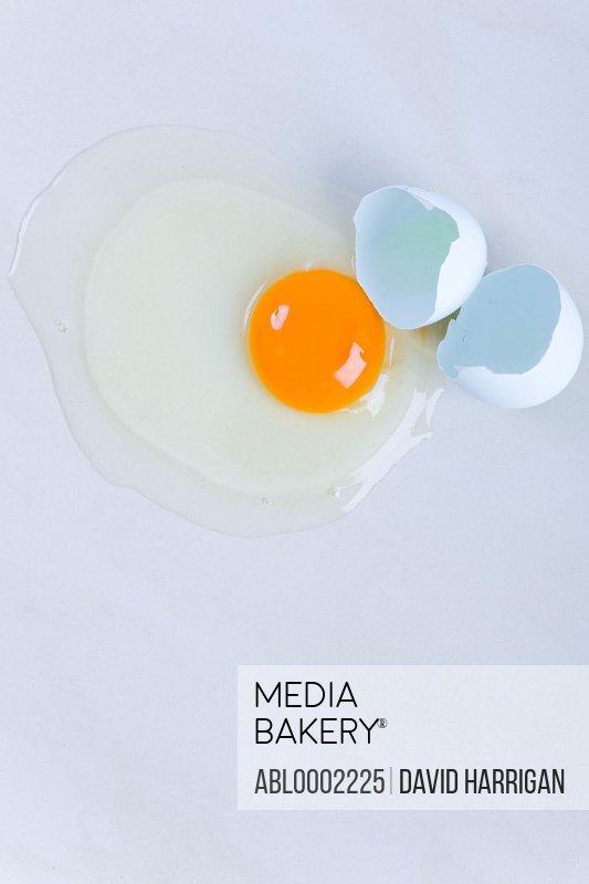 Broken Egg - High angle view