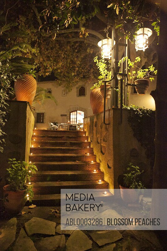 Illuminated Outdoor Stairway of Country House
