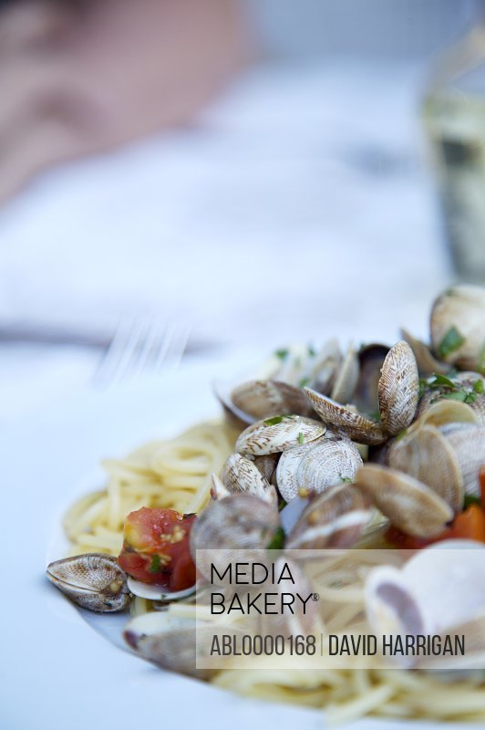Close up of seafood spaghetti with clams