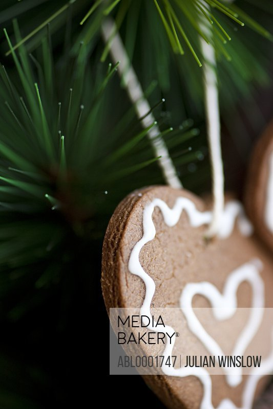Close up of heart shaped biscuits hanging from Christmas tree