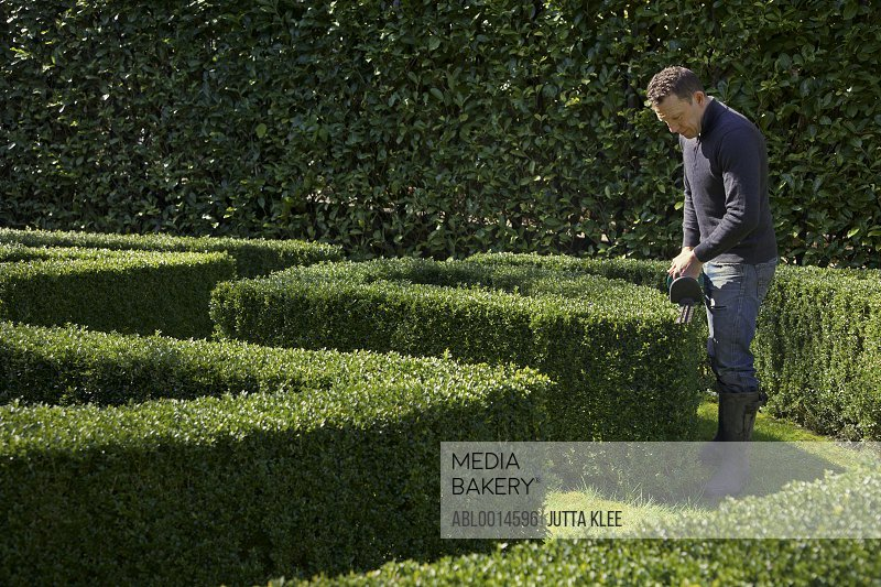 Gardener Cutting Boxwood Hedge with Electric Trimmer
