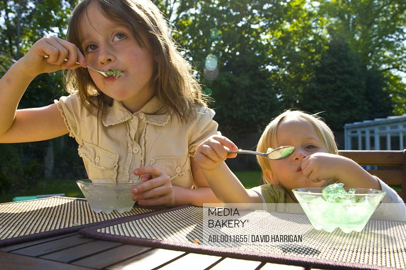 Young girl and boy sitting at garden table eating jelly