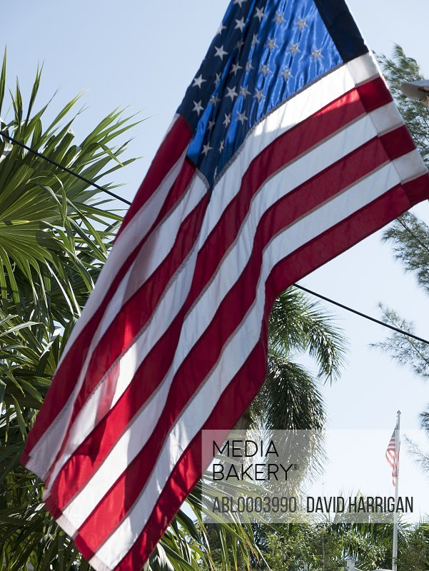 Close up of an American Flag and Palm Trees