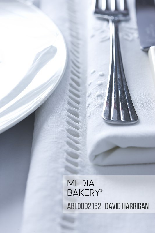 Place Setting - Close-up view