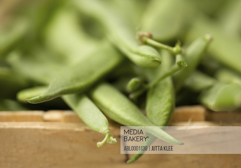 Extreme close up of broad bean pods in a wooden crate