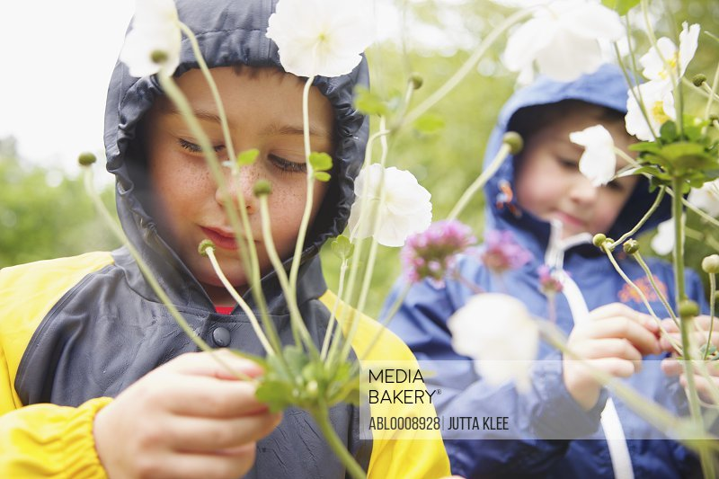 Two Boys Wearing Hooded Raincoats Examining Flower Plant