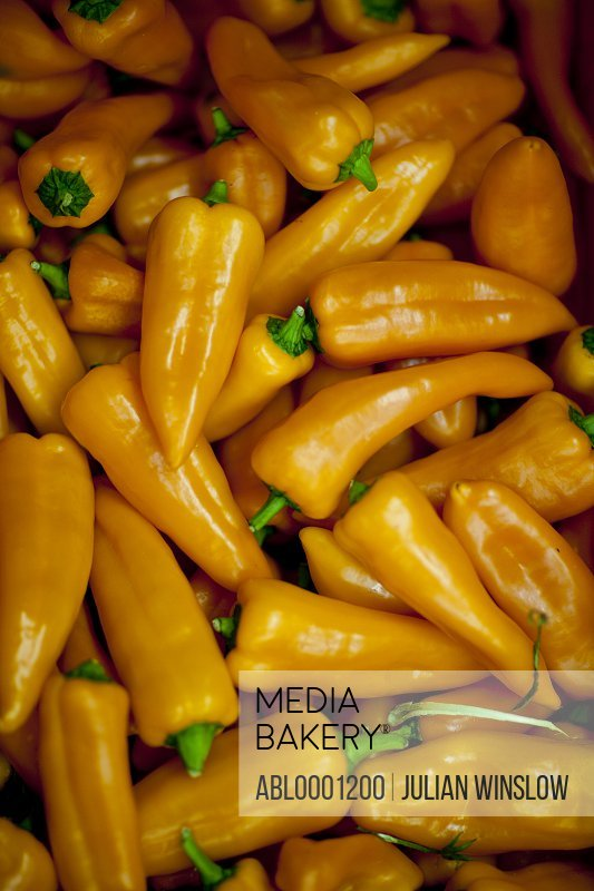 Orange pointed peppers - Capiscum