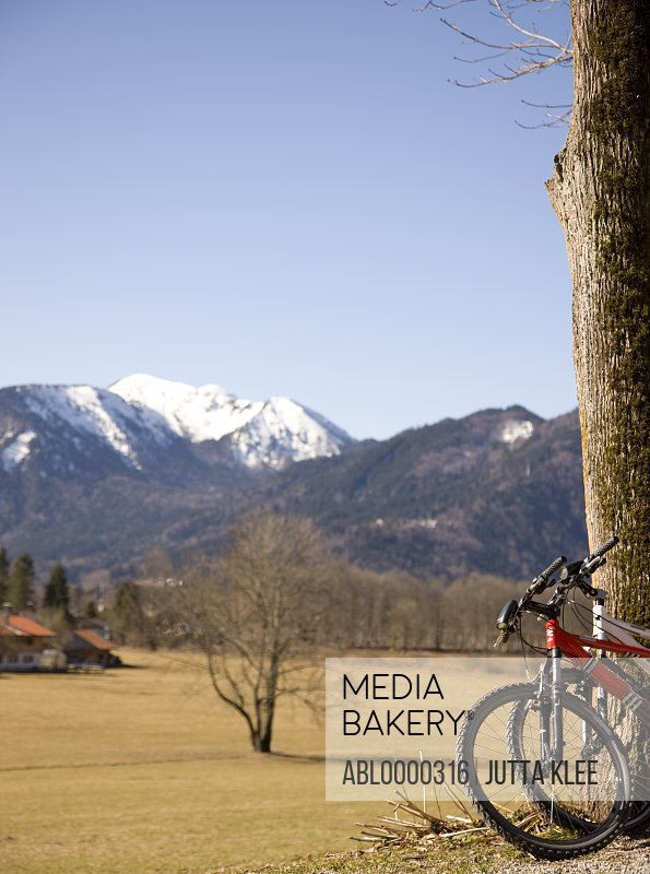 Mountain view with bicycles against tree