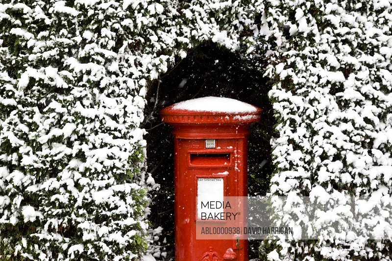 British post box surrounded by hedging covered in snow