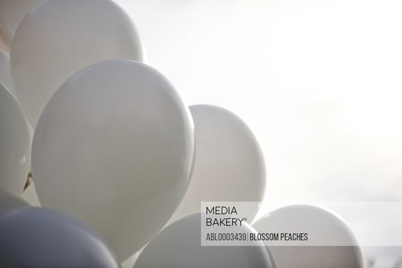 White Party Balloons, Close-up View