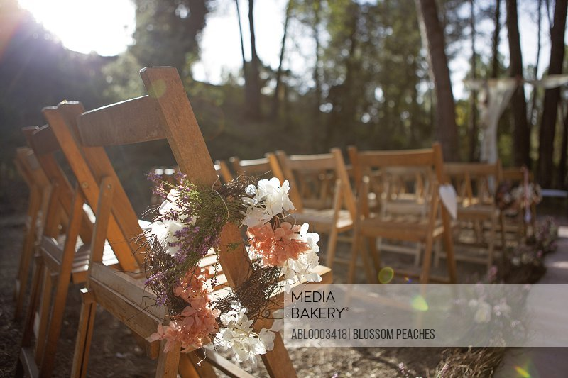 Chairs in Line at Outdoor Wedding Ceremony