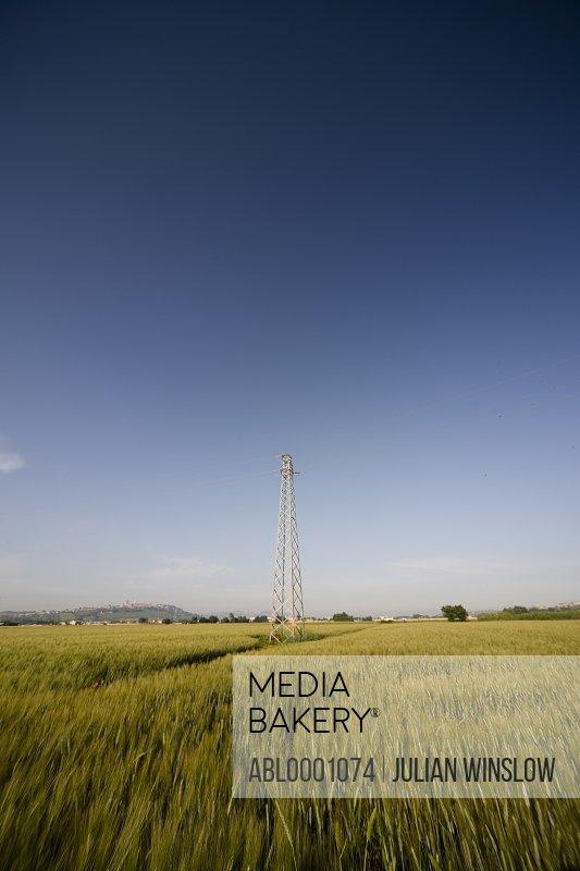 Electricity pylon on a wheat field