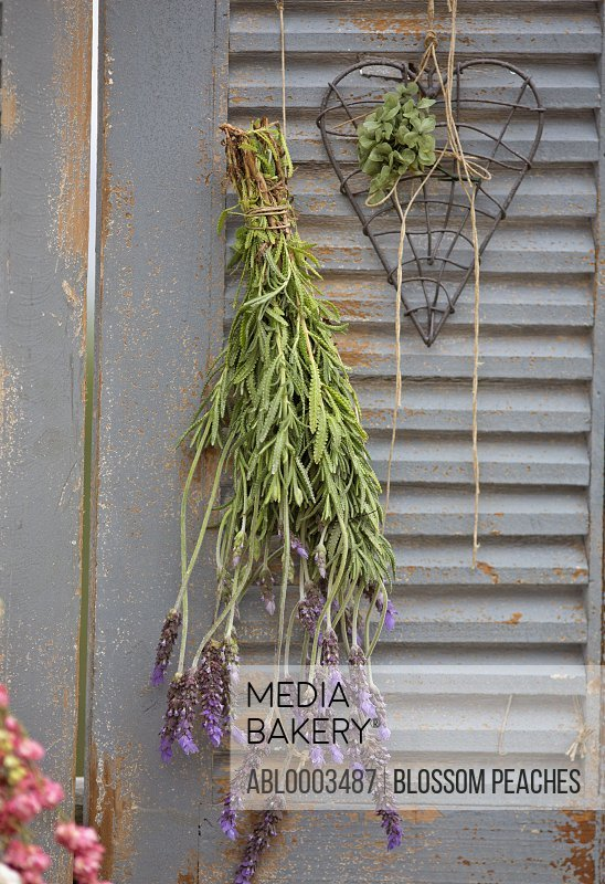 Lavender Flowers and Heart Shaped Decoration Hanging from Shutters
