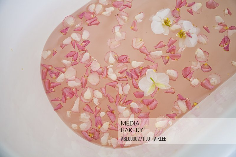 Bathtub filled with white and pink rose petals
