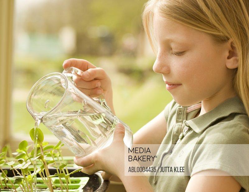 Girl watering seedlings with jug