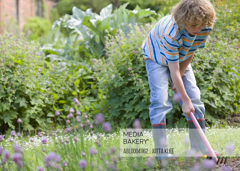 Young boy digging with hoe and fork in the garden