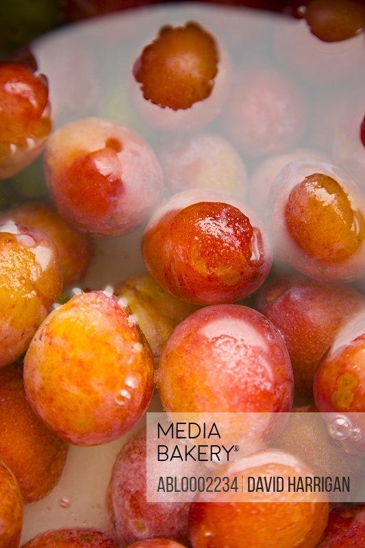 Fresh Plums under Water