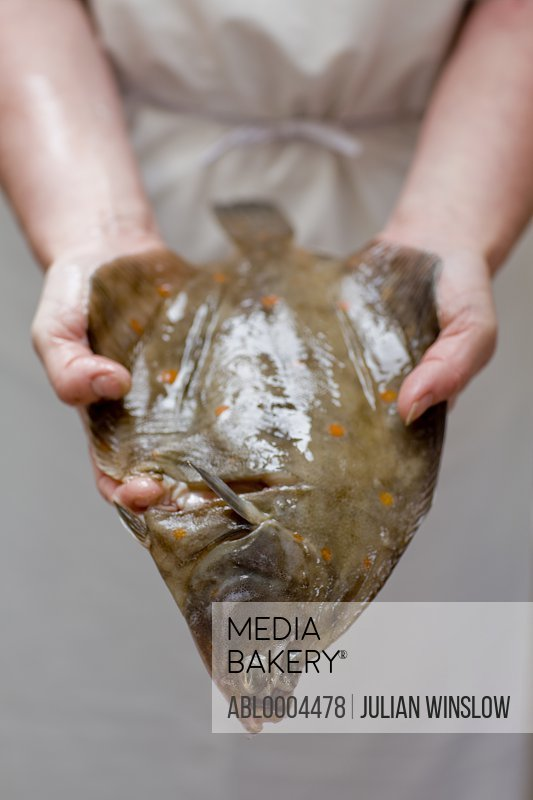 Close up of fishmonger's hands holding fish