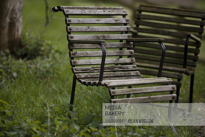 Two wooden garden chairs in overgrown garden