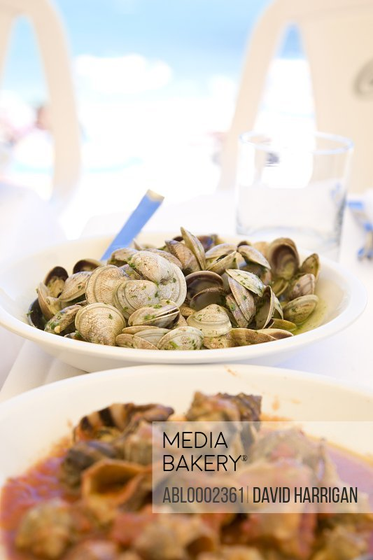 Clams and Shellfish