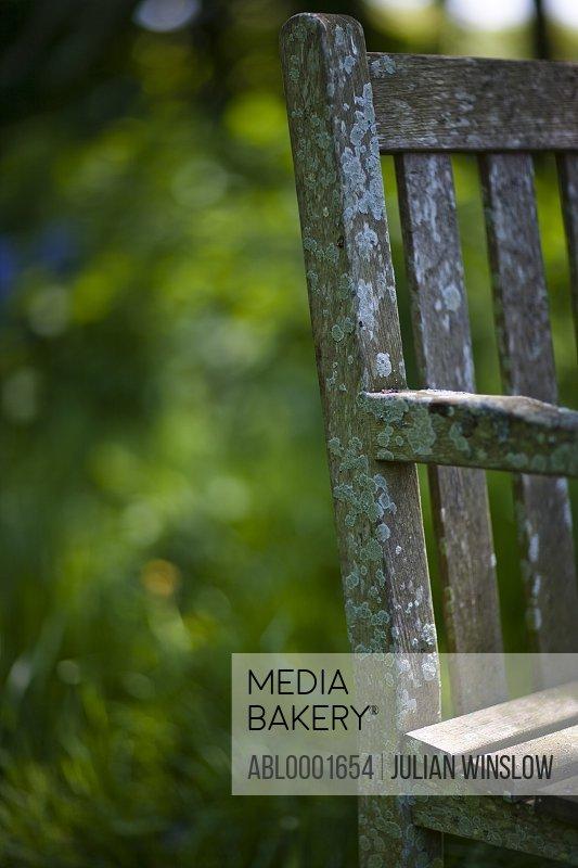 Detail of a moldy garden chair
