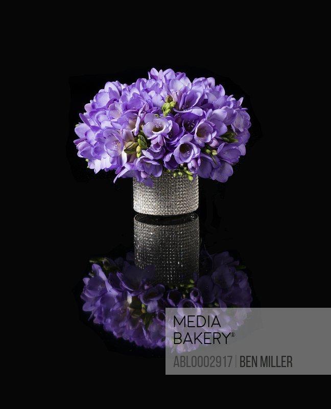 Bouquet of Purple Freesia in a Glittering Vase