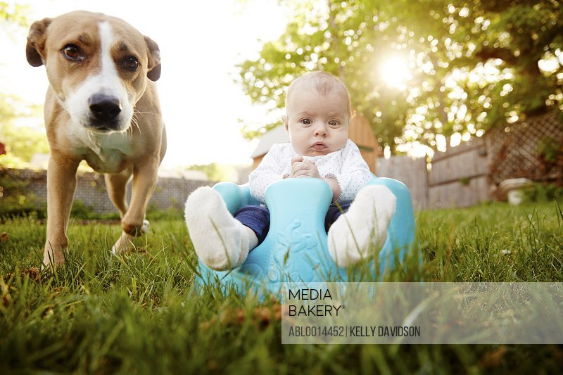 Baby Girl Sitting in Garden with Dog