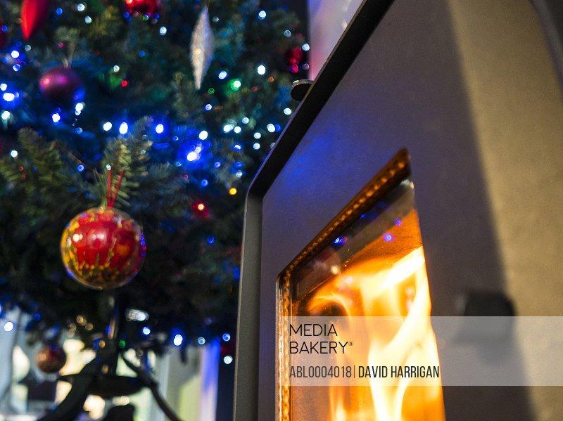 Wood Burning Stove and Christmas Tree