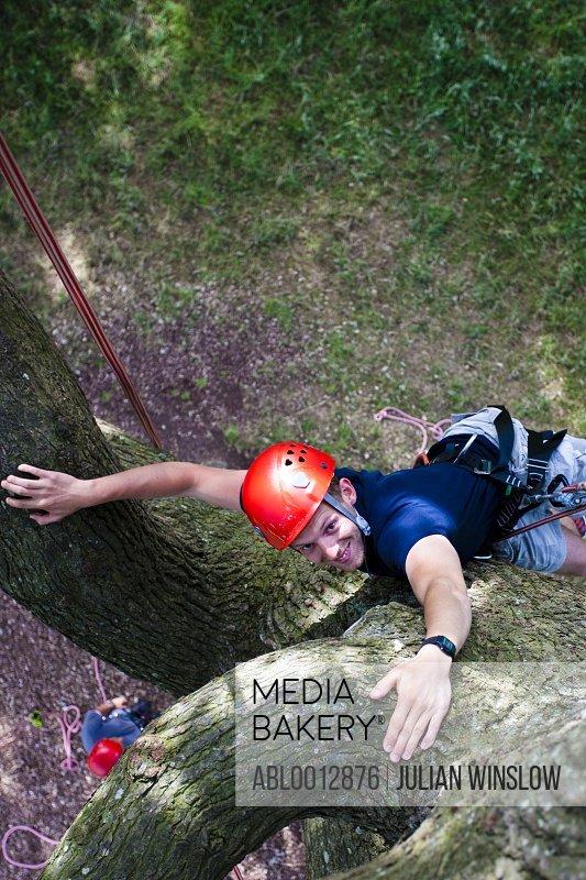 Man climbing a tree - high angle
