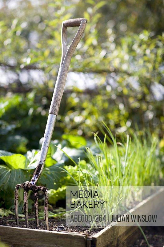 Close up of a pitchfork in a garden