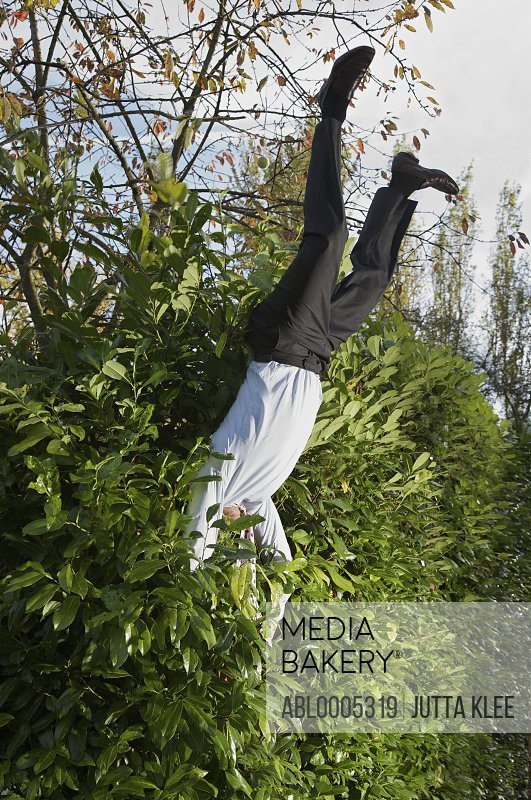 Businessman landing in a hedge upside down