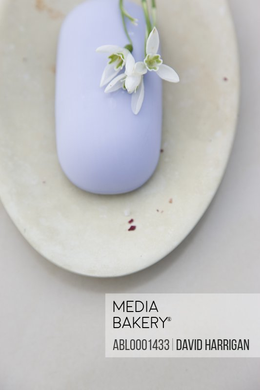 Close up of a lavender soap and white flower on a soap dish