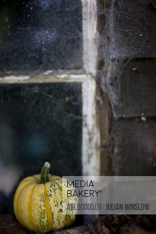 Yellow pumpkin on window sill with cobweb