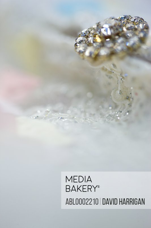 Detail of Wedding Gown with Diamond Clasp