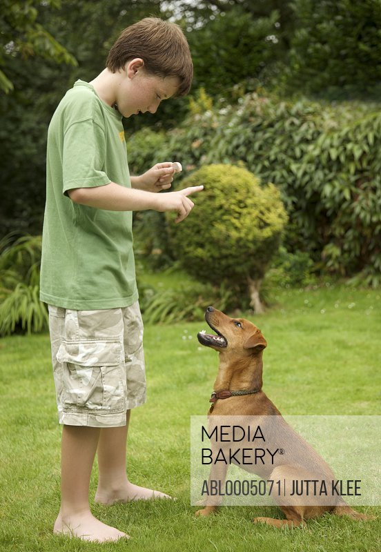 Young boy  training his dog to sit