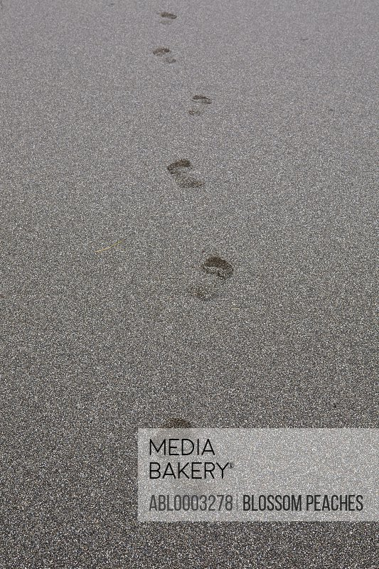 Footprints in Grey Sand