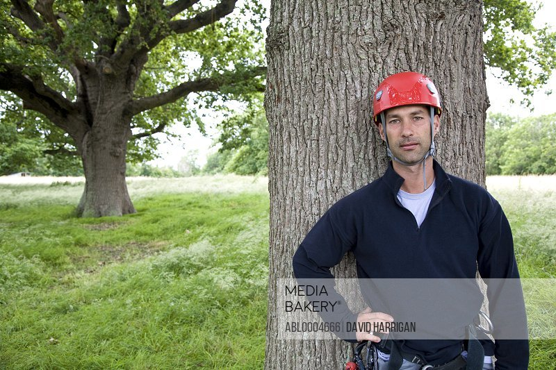 Portrait of a climber standing by tree