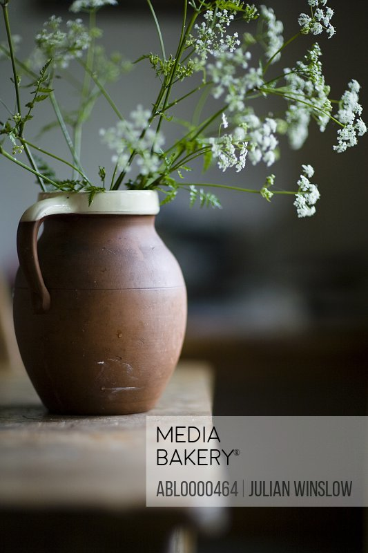 Cow parsley flowers in terracotta jug on rustic table