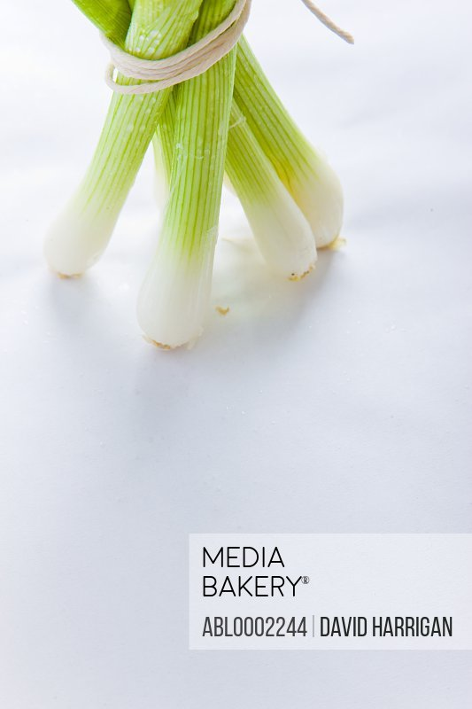 Bundle of Spring Onions Tied up with String