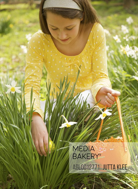 Young girl searching for an Easter egg between daffodils