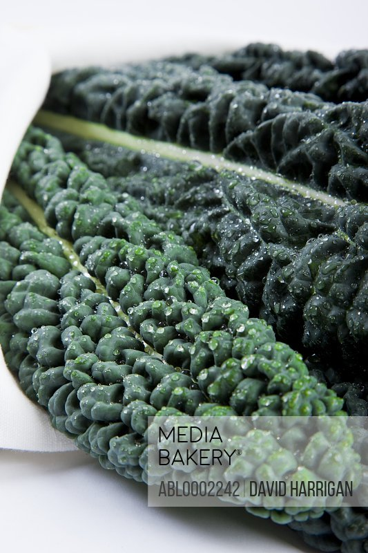 Cavolo Nero Leaves Wrapped in a Cloth
