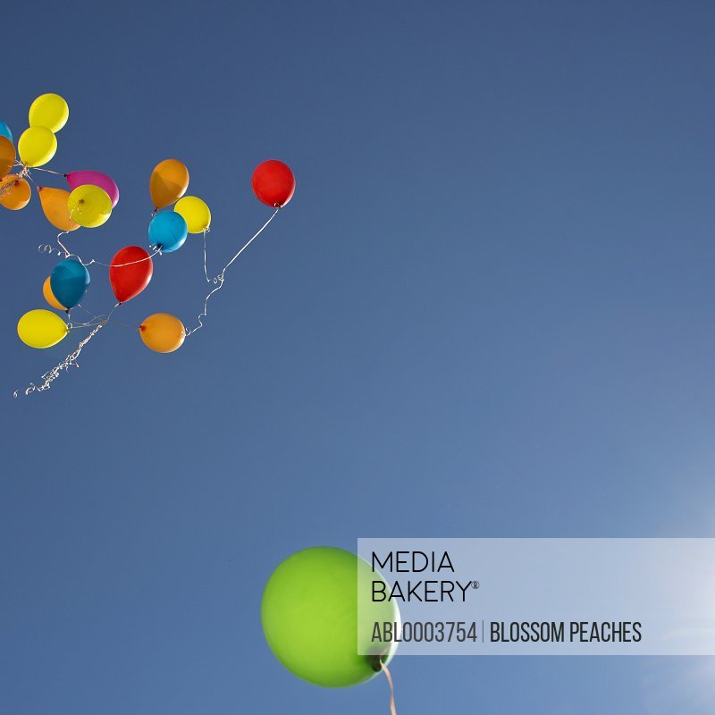 Colourful Party Balloons Floating in the Sky