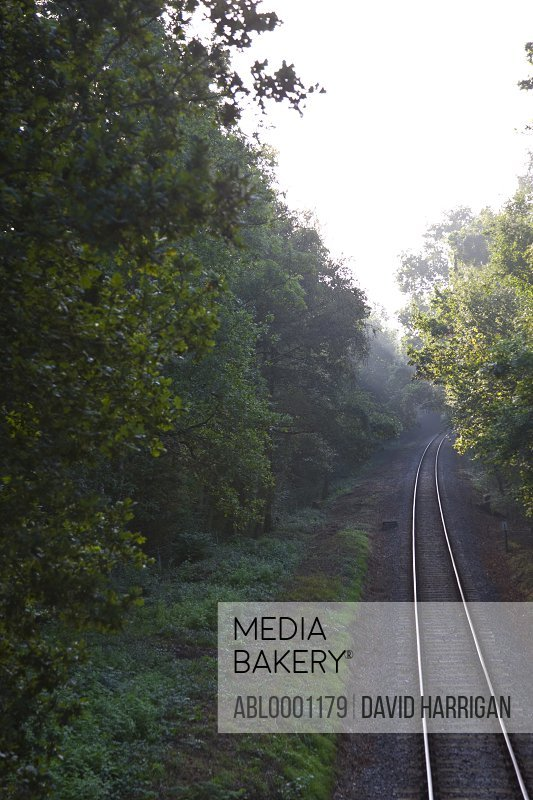 Train tracks through tree lined countryside