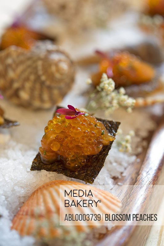Shellfish and Fish Roe Sushi