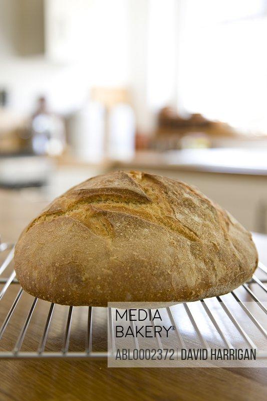 Farmhouse Bread on Rack